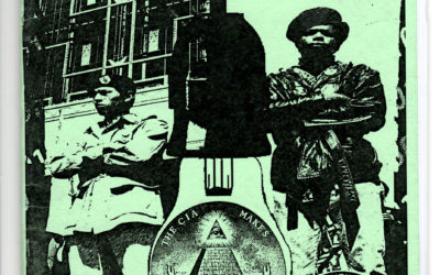 What Happened to the Black Panther Party